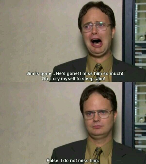 The Office Dwight The Office Tv Show Pinterest The Office