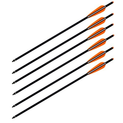 Best price on Wizard Archery Carbon Arrows Crossbow Bolts - 6/pack