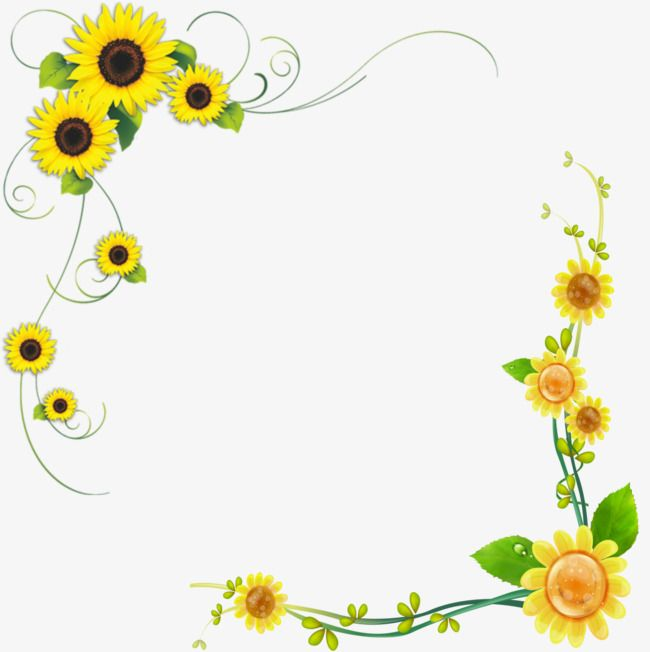 36+ Sunflower corner border clipart information