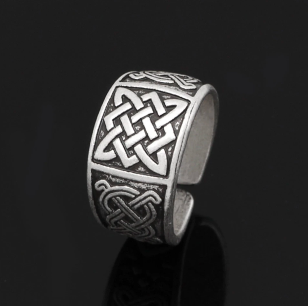 Viking Lord of the Ring in 2020 Rings for men, Viking