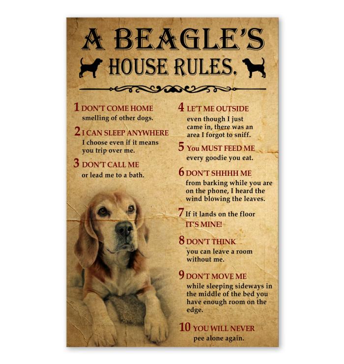 A Beagle S House Rules Losing A Dog Beagle Dogs