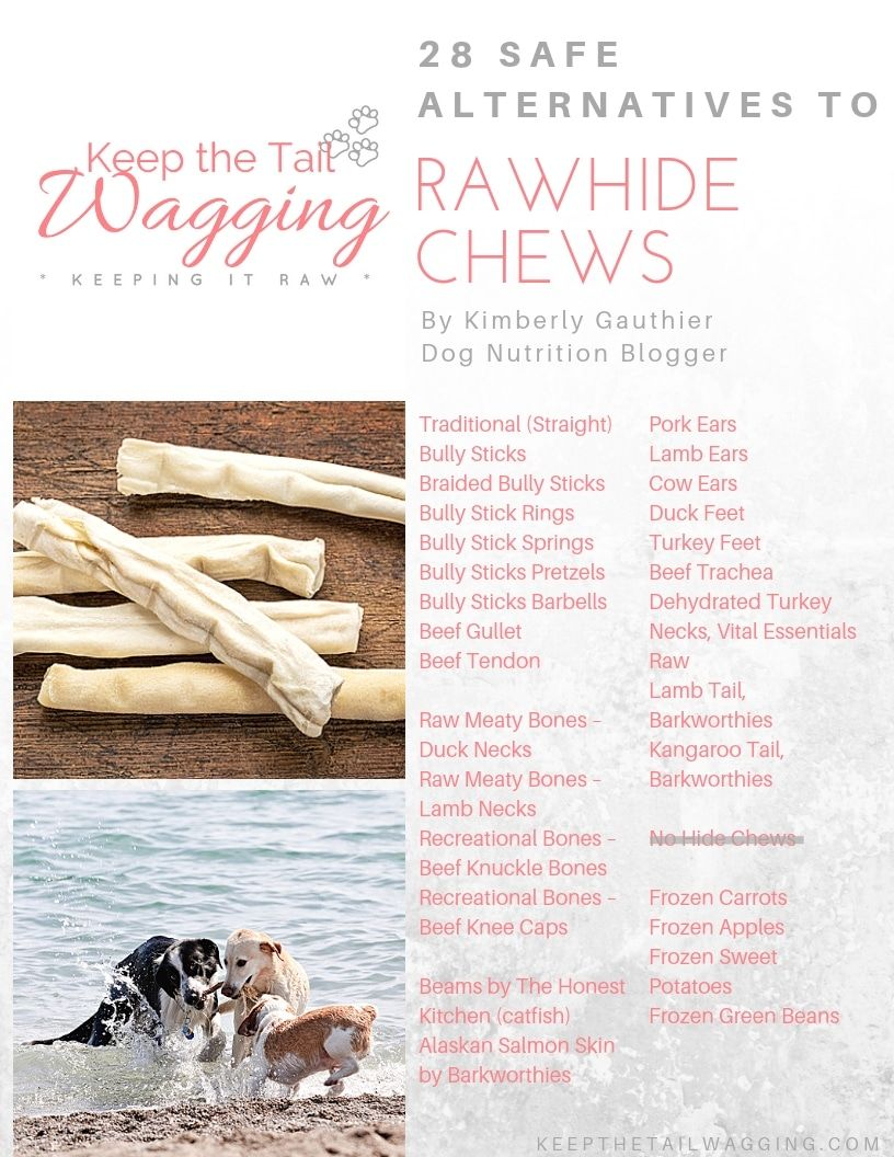 28 Safe Alternatives To Raw Hide Chews Keep The Tail Wagging