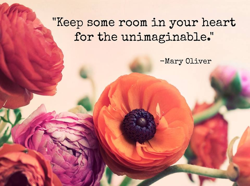 Words of wisdom from Mary Oliver.