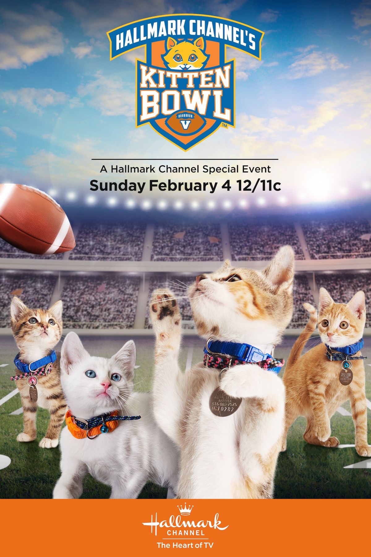 Get Ready For The Big Game It S Kitten Bowl V Premiering February 4 12 11c On Hallmark Channel Kittenbowl Hallmark Kitten Bowls Kitten Hallmark Channel