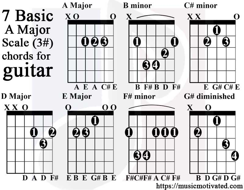 Image Result For A Major Scale Guitar Guitar Pinterest Guitar
