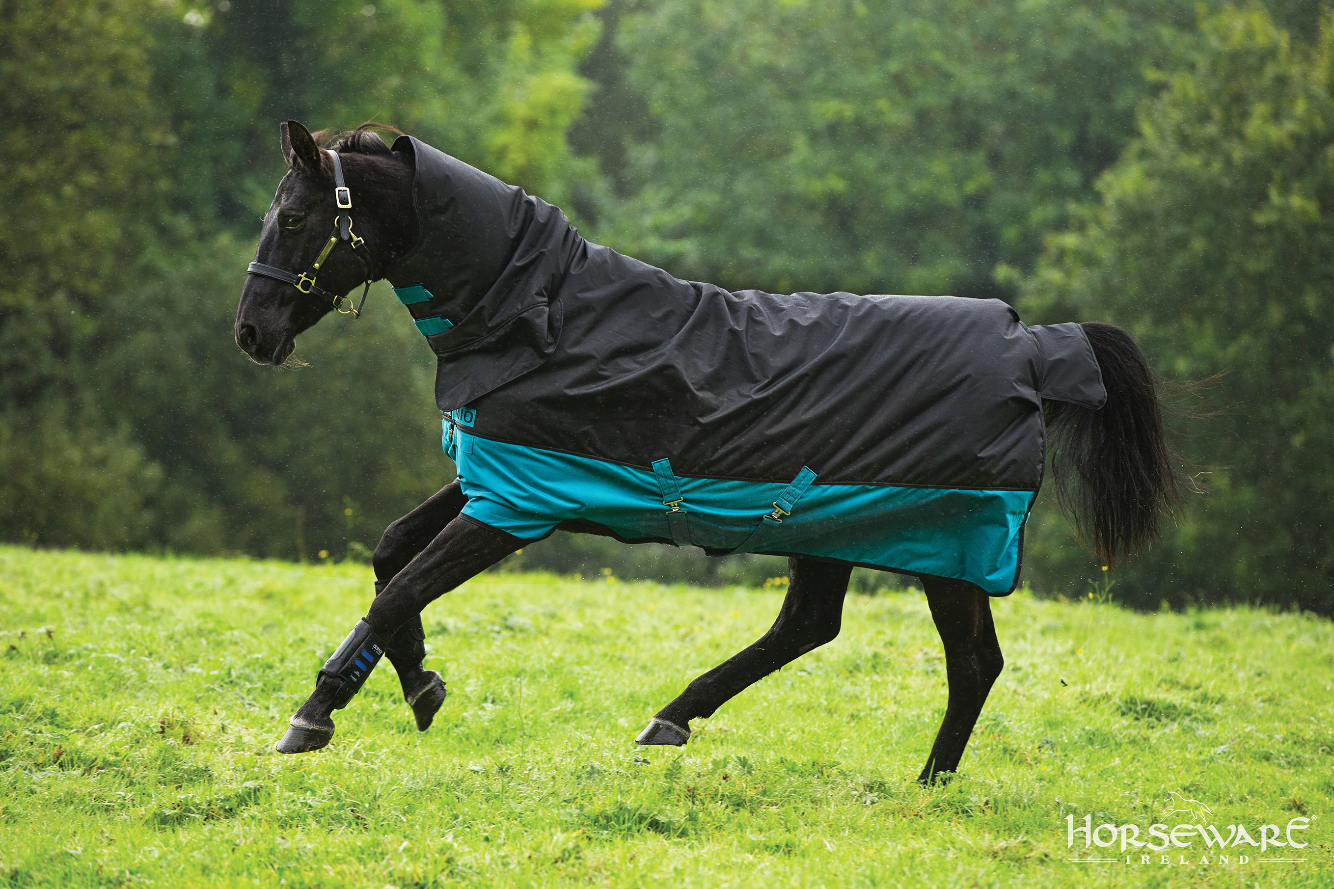 Horseware Collection S S16 Mio All In One Visit Www