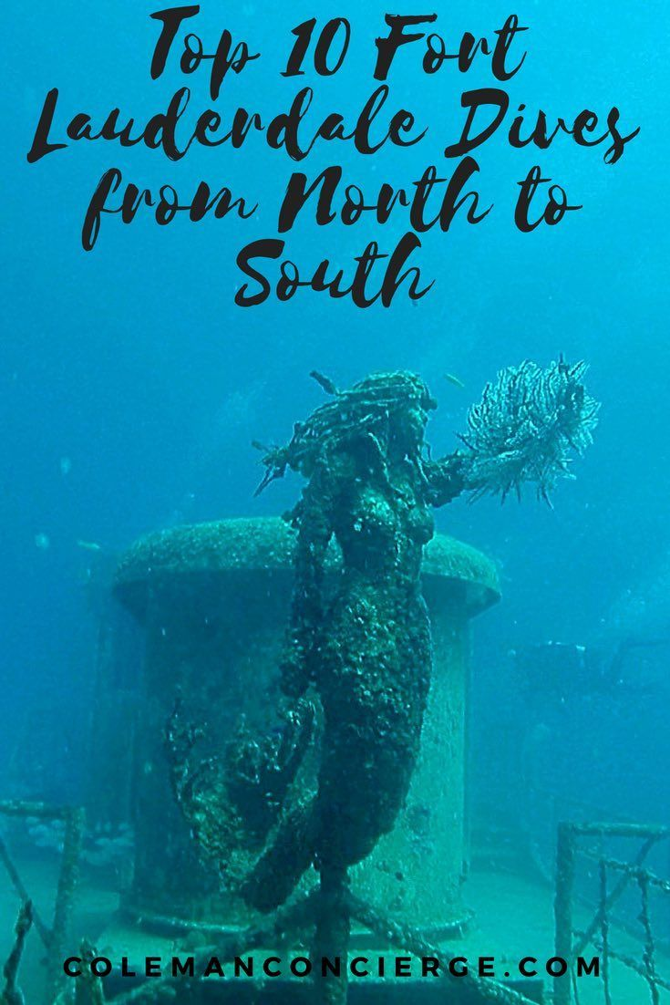 We have put together a dang good guide to Fort Lauderdale Scuba Diving outlining our picks for the 10 best dives from Boca Raton to Dania Beach and all of Fort Lauderdale / Broward County in between. Be sure to click in to see the interactive map, loaded with site descriptions, links, photos, and videos. #Scuba #FortLauderdale #Diving #Florida #ScubaDiving