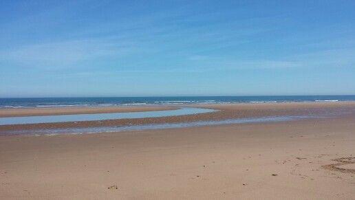 Beach Front Montrose Angus Scotland
