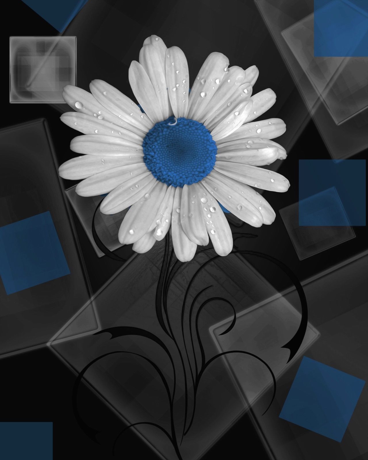 Blue Gray Daisy Flower Modern Floral Home Decor Wall Art Matted Picture  Status: Available!