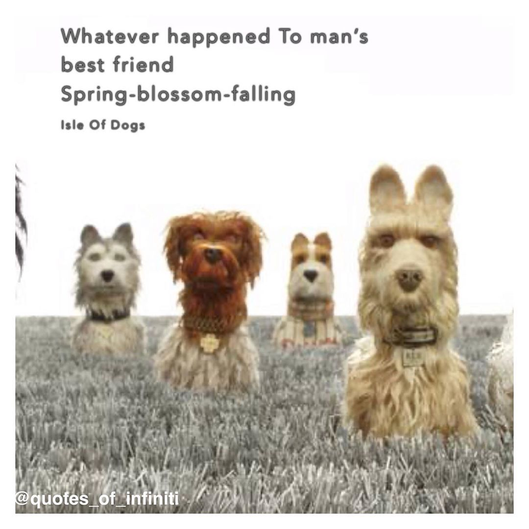 Pin By Caroline Draper On Movies In 2020 Isle Of Dogs Dog Quotes Dogs