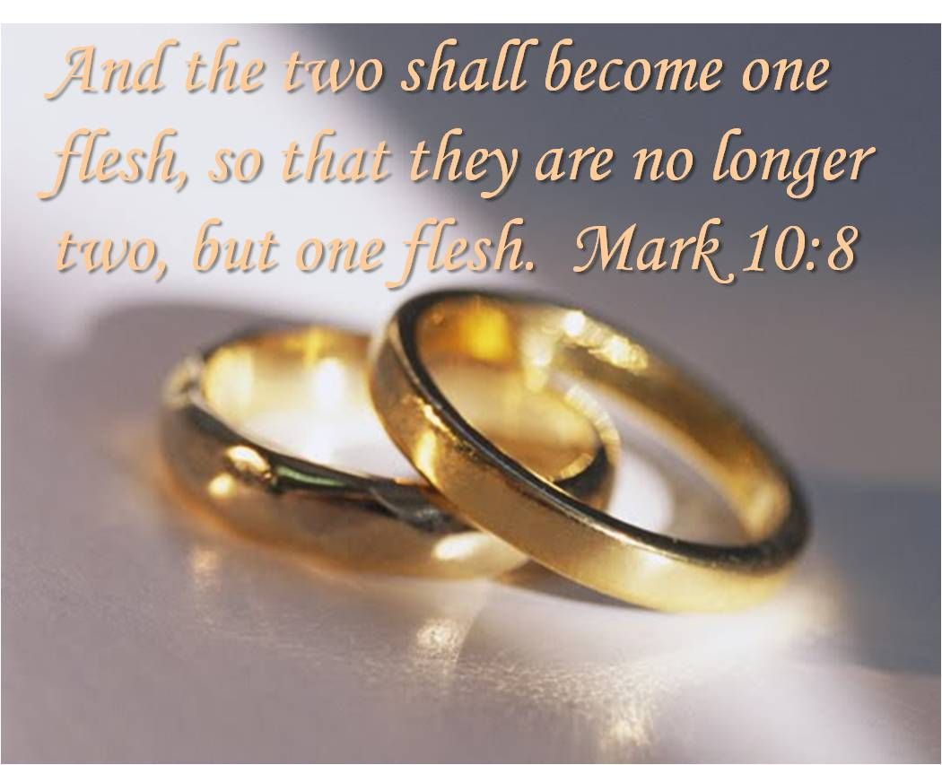 Bible Verse About Marriage Becoming One