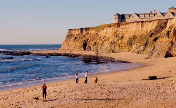 Half Moon Bay A Great DogFriendly Getaway (With images