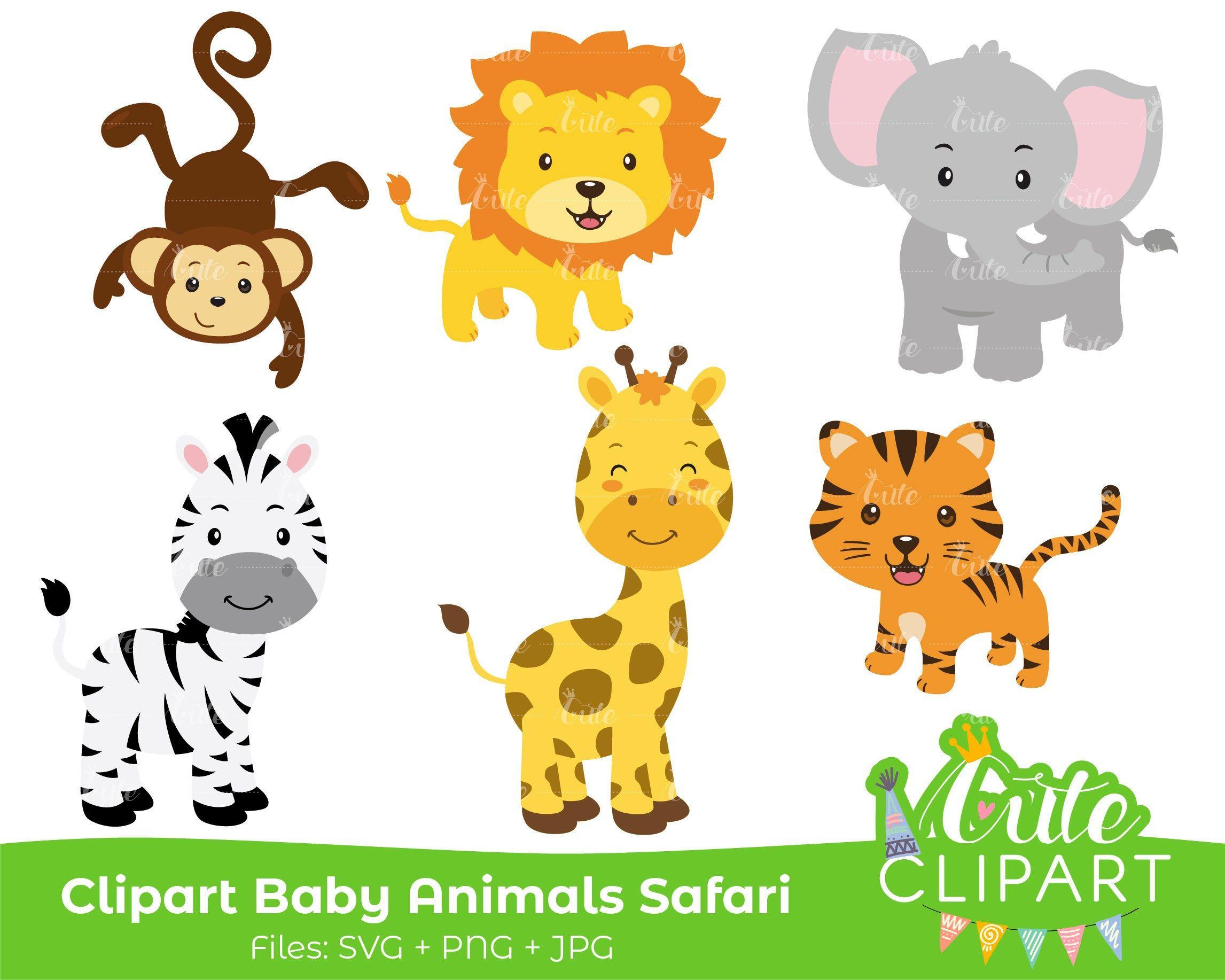 Rainforest Animals Safari Set Clipart Fan Made Version Svg Png Jpg Printables De Cuteclipartsdn En Etsy Safari Baby Animals Baby Animals Safari