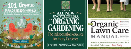 Planting Your Garden Plants Lawn Care Garden