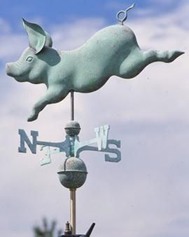 flying pig weathervane | Pigs
