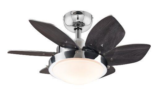 Two Light 24 Inch Reversible Six Blade Indoor Ceiling Fan For