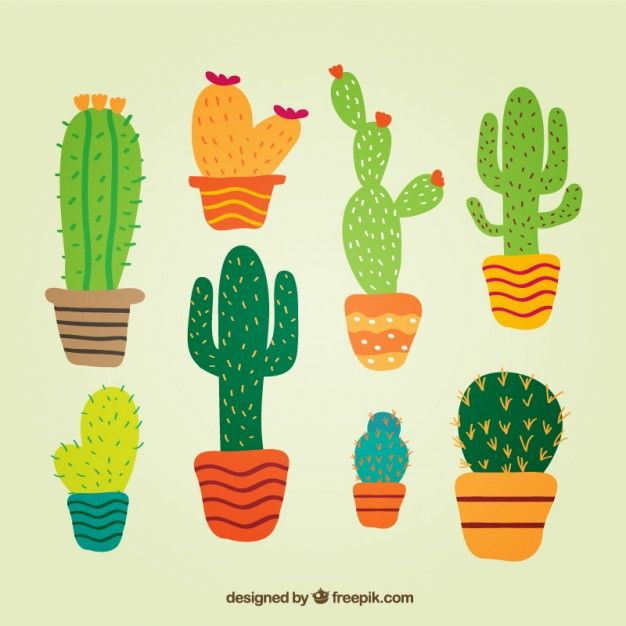 Cactus in cute style Free Vector http://www.freepik.com/free-photos-vectors/cactus