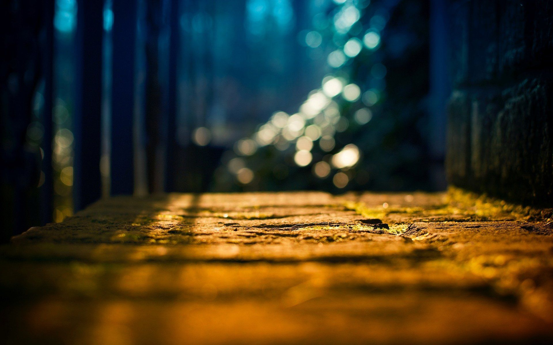 Close Up Land Light Tree Sun Blur Bokeh Background Wallpaper Widescreen Full Screen Widescreen Hd Bokeh Wallpaper Bokeh Background Blur Background Photography