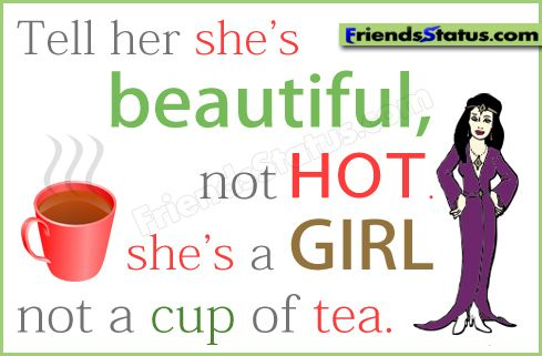 Tell Her She's Beautiful Quotes Classy Funny Attitude Quotes  Tell Her She's Beautiful Not Hotshe's A