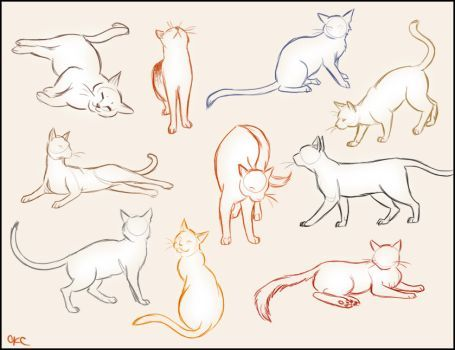 Cat Sketches By Inonibird Cat Sketch Animal Drawings Cat Pose