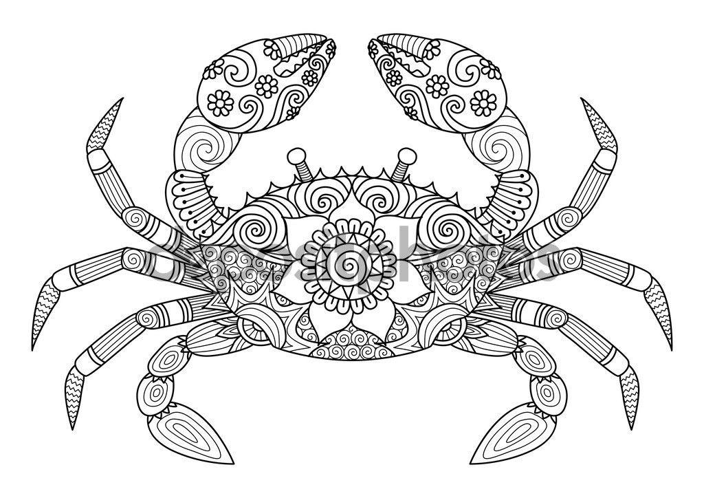 Cangrejo de zentangle dibujada para colorear libro para audult a ...