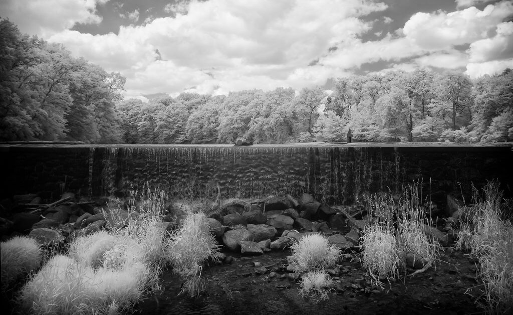 Great Swamps IR 02