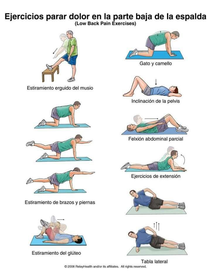 Ejercicio para dolor en la parte baja de la espalda  c96431751936