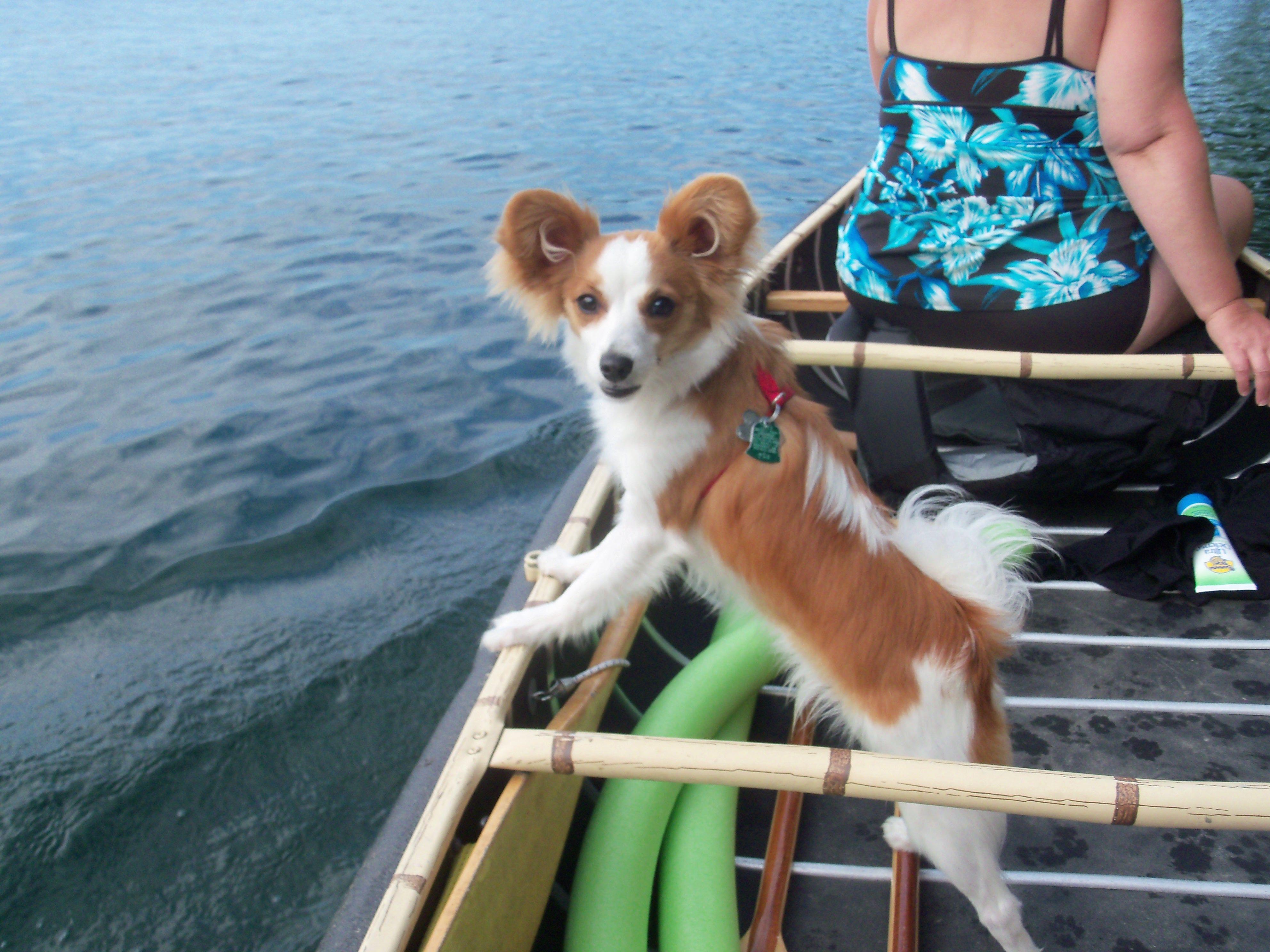 Canoe ride!