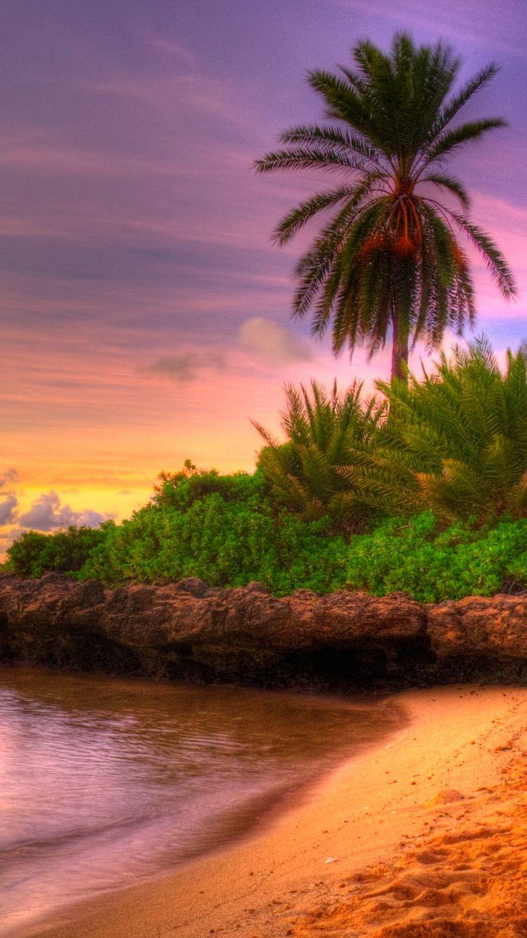 60 Beautiful Nature Iphone Wallpapers Wallpaper Iphone Summer Beach Sunset Wallpaper Iphone Wallpaper Tropical