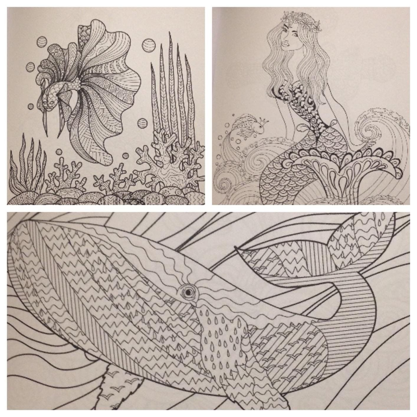Adult coloring books sea world coloring books for adults featuring