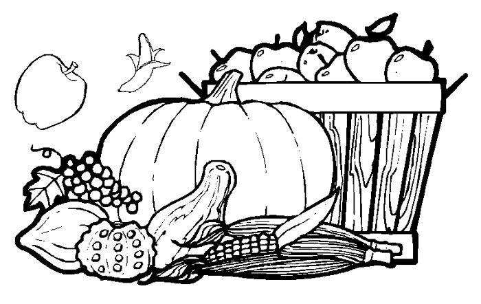 они мыть овощи и фрукты картинки карандашом отличительных особенностей можно