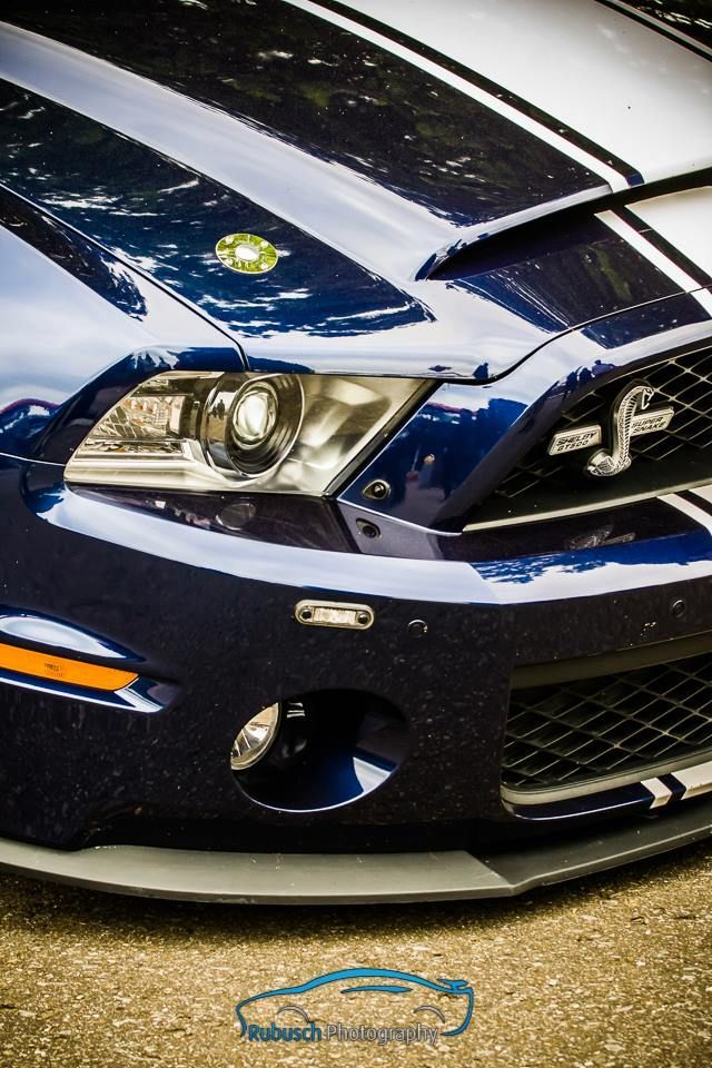 Awesome Ford: She's Got Her Eye On You, A Stunning Super Snake...  Cars Check more at http://24car.top/2017/2017/07/09/ford-shes-got-her-eye-on-you-a-stunning-super-snake-cars/