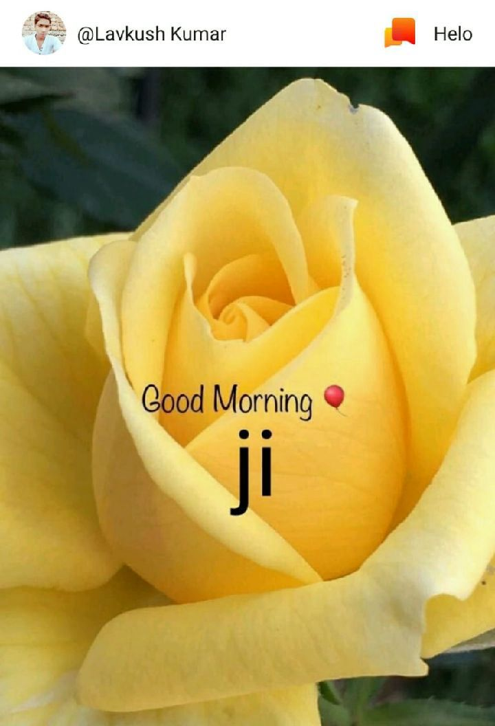 gm...all...db..frnds....