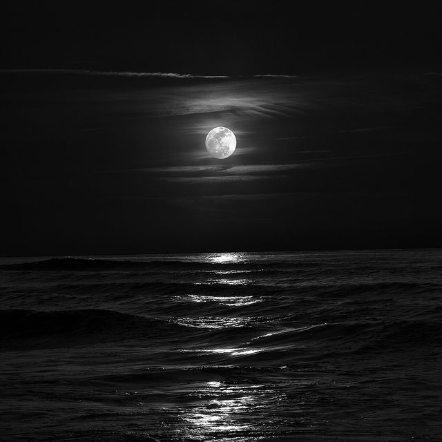 Searching For Moonlight Nature Photography Beautiful Moon White Photography