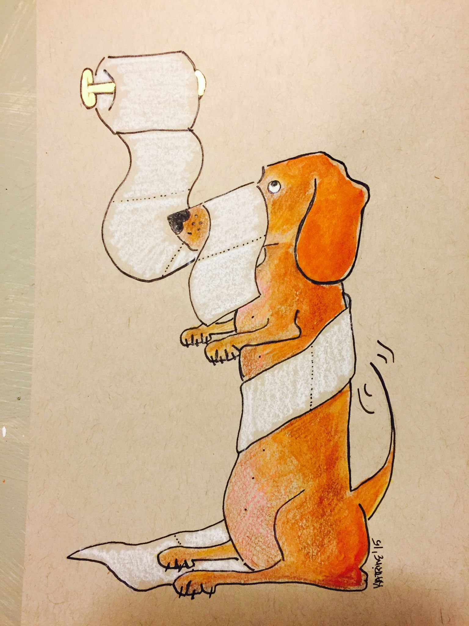 Short Red Haired Dachshund In Toilet Paper Bathroom Loo Art Drawing Illustration