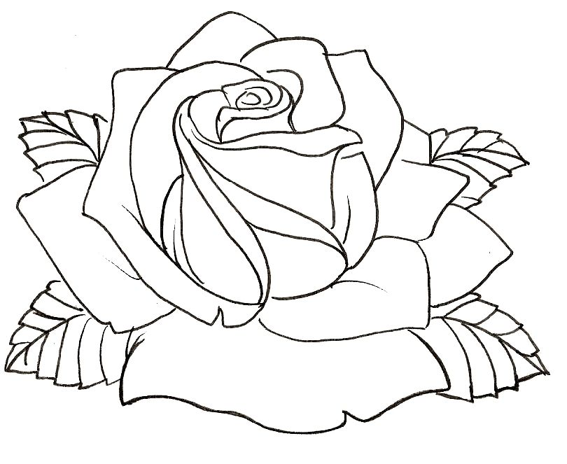 Весеннее, шаблоны розы