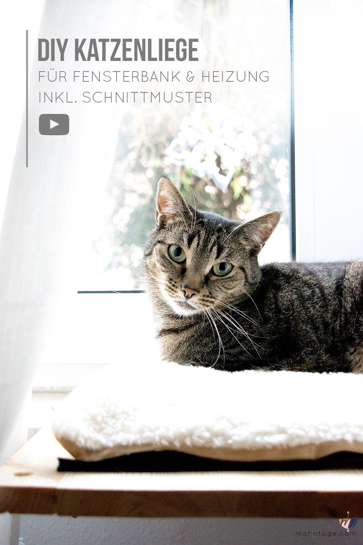 Katzenbett selber bauen   für Fensterbank & Heizung   mit Video ...
