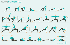 the twist effect  yoga sequences different types of yoga