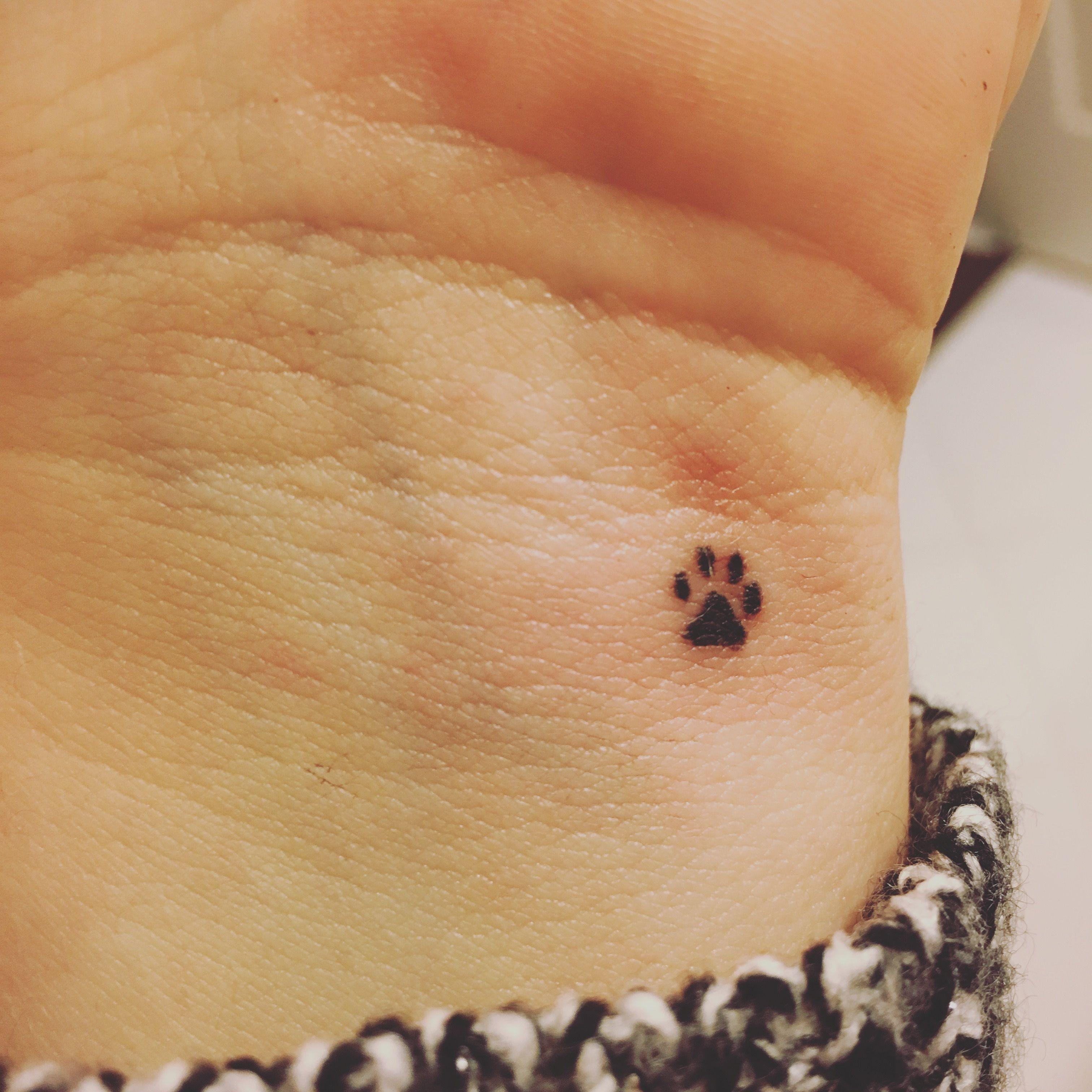 Paw Print Tattoo Small Dog Tattoos Pawprint Tattoo Paw Print Tattoo