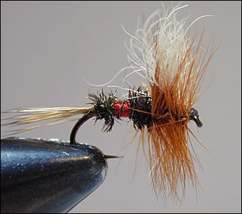 DRY FLY FISHING FLIES ROYAL WULFF 6 x #12