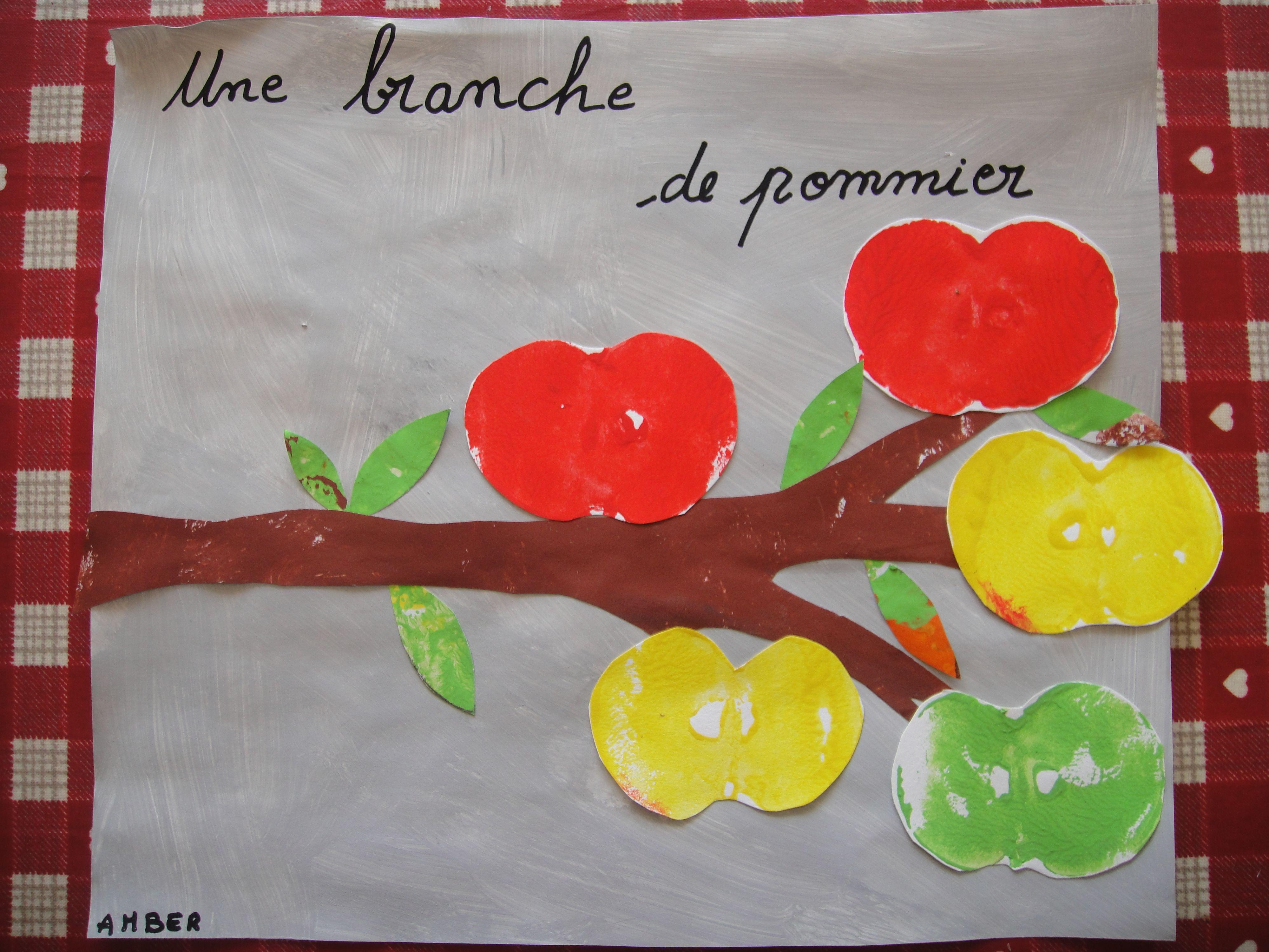 Une branche de pommier http://nounoudescimes.canalblog.com/