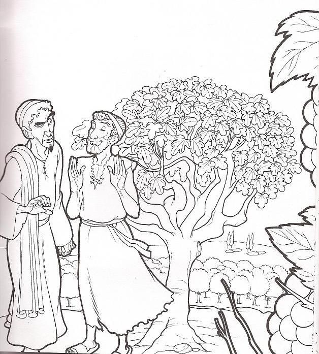 Coloring Page | Bible - Parable of The Fig Tree | Bible ...