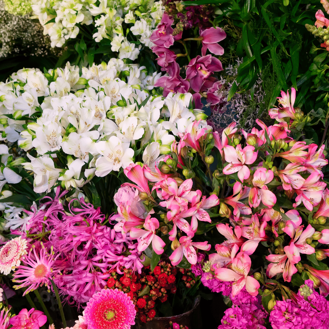 Grow Flowers For Profit Organic Gardening Mother Earth News In 2020 Flower Farm Growing Flowers Types Of Flowers