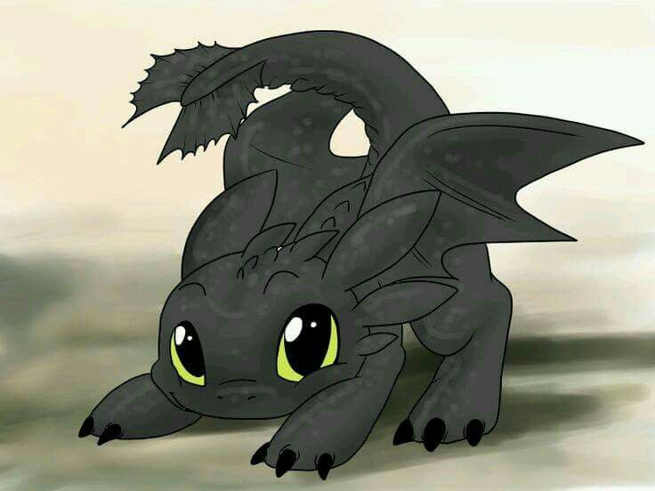 Baby Toothless Toothless Drawing How Train Your Dragon Cute Dragons