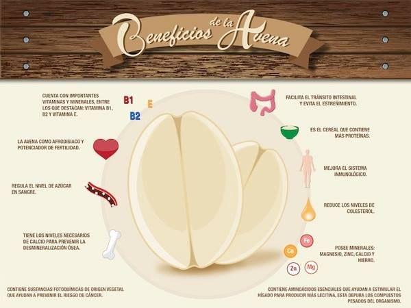 BENEFICIOS DE LA AVENA / CEREAL.