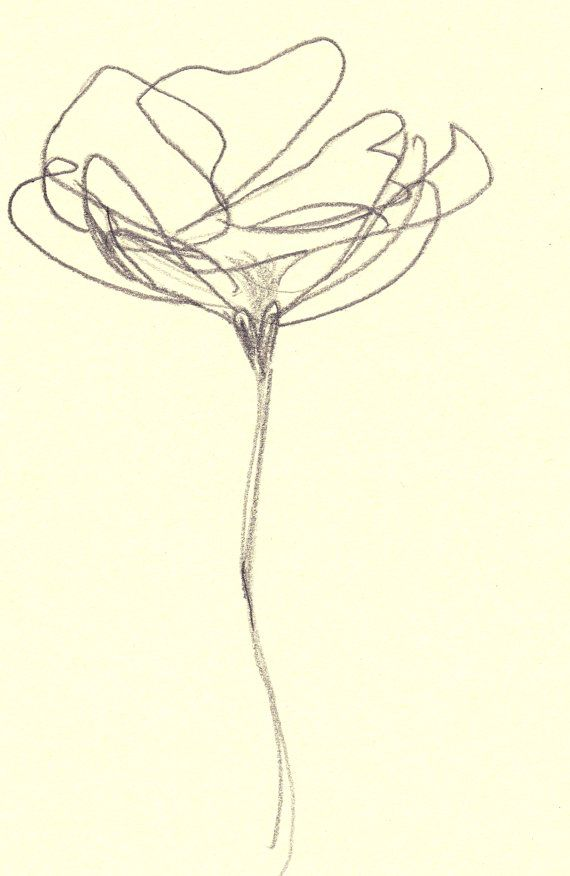 Contour Line Drawing Flowers : Large inches for immediate sale quot curves series