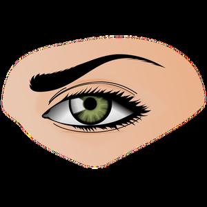 Publicdomainvectors Org Green Eye Illustration Eye Illustration Eyes Green Eyes