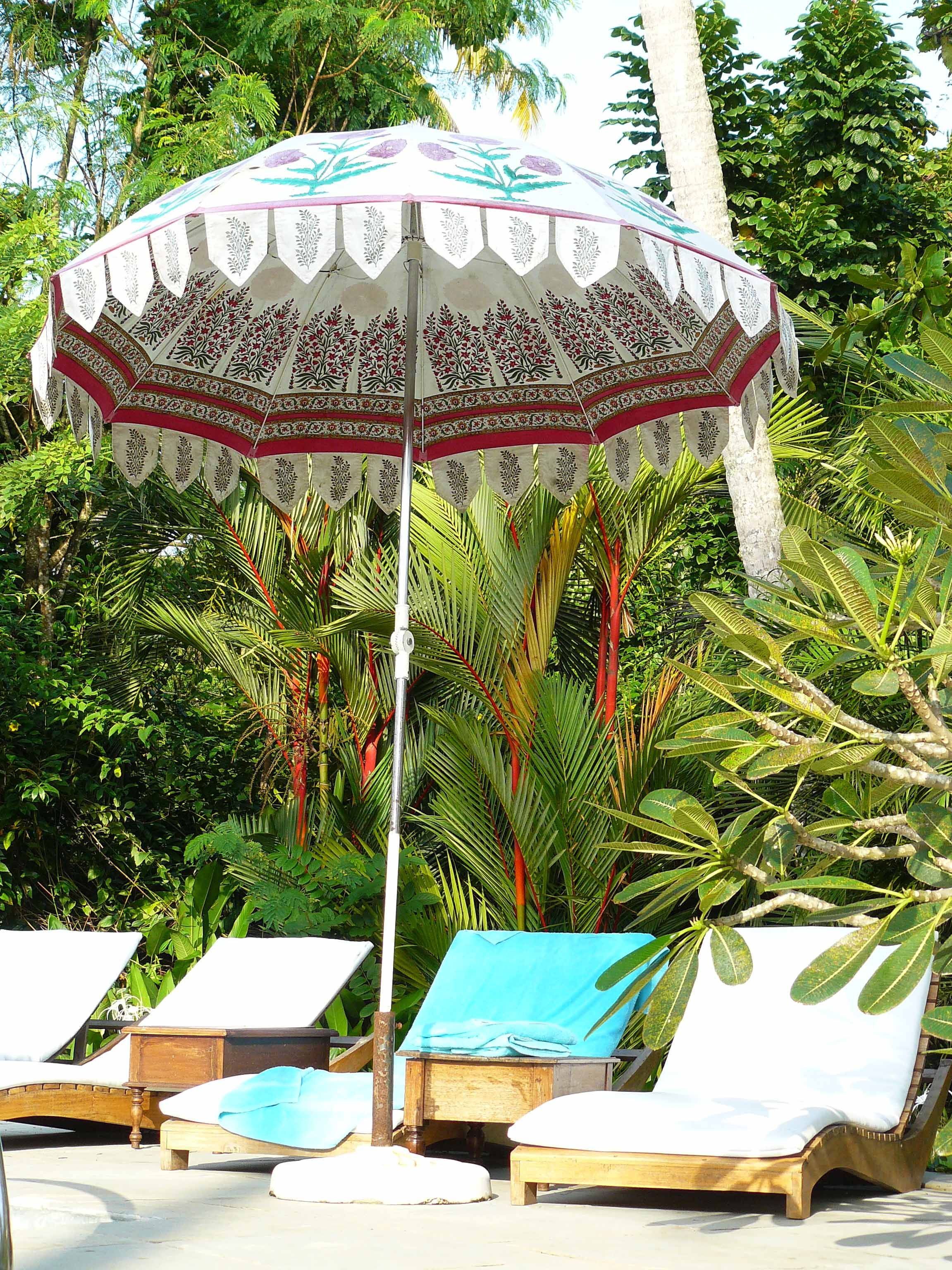 Great Indian Parasol