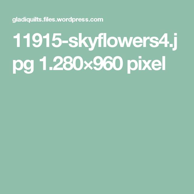 11915-skyflowers4.jpg 1.280×960 pixel
