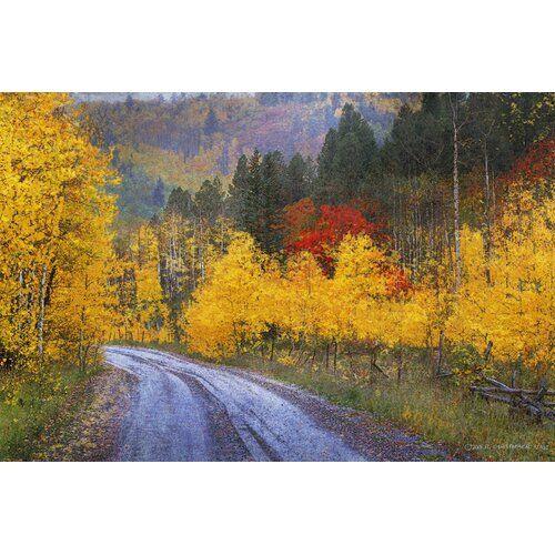 Leinwandbild Wet Road Peak of Autumn von Chris Vest East Urban Home Größe 102 cm H x 152 cm B